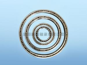 Equal section thin wall bearing